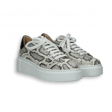 Rock python printed calf sneaker rubber sole
